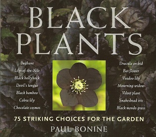 Image for Black Plants:  75 Striking Choices for the Garden