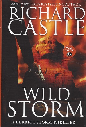 Image for Wild Storm: A Derrick Storm Thriller